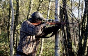 A Buyer's Guide to Air Guns for Hunting