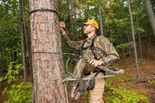 When Should A Hunter Wear A Fall Arrest System